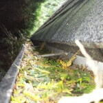 Gutter Cleaning Langley